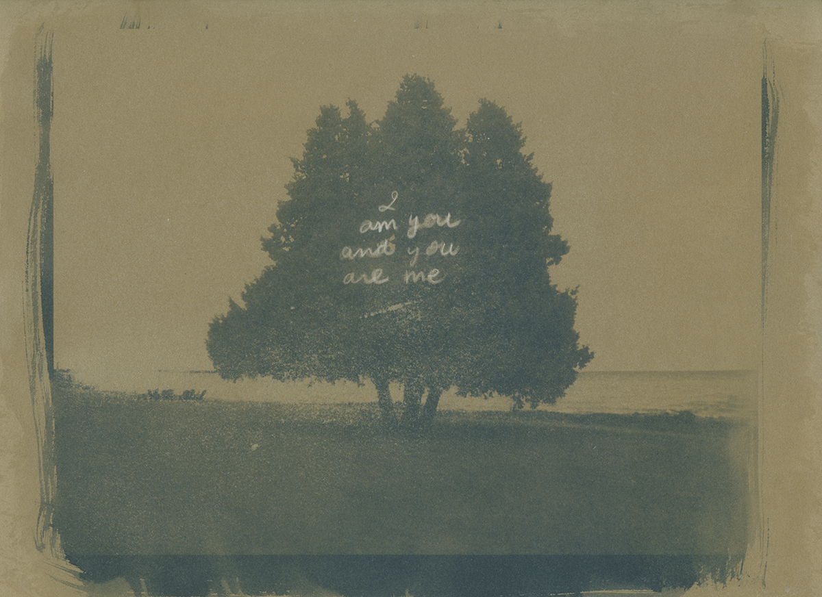 Cyanotype photograph on kraft paper with handwritten text.