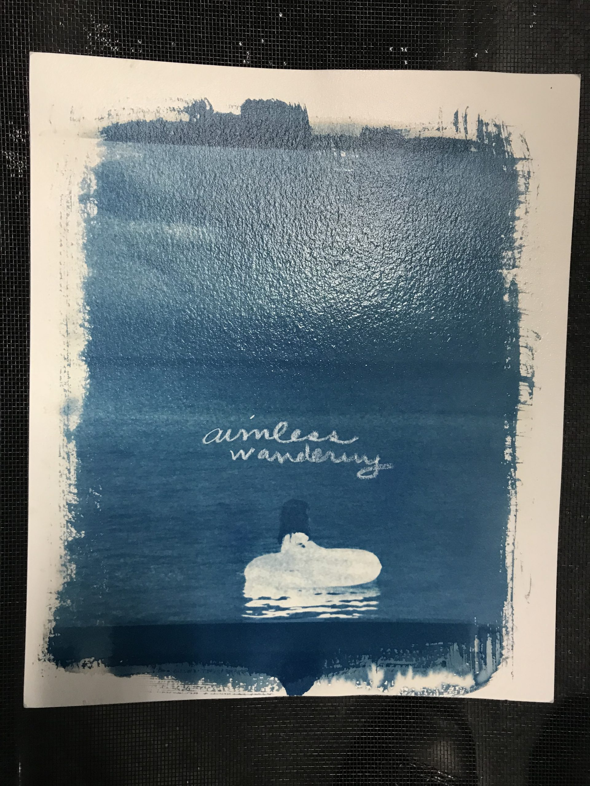"Image of blue cyanotype with ""aimless wandering"" in cursive in the middle, girl in inner tube in water/lake."