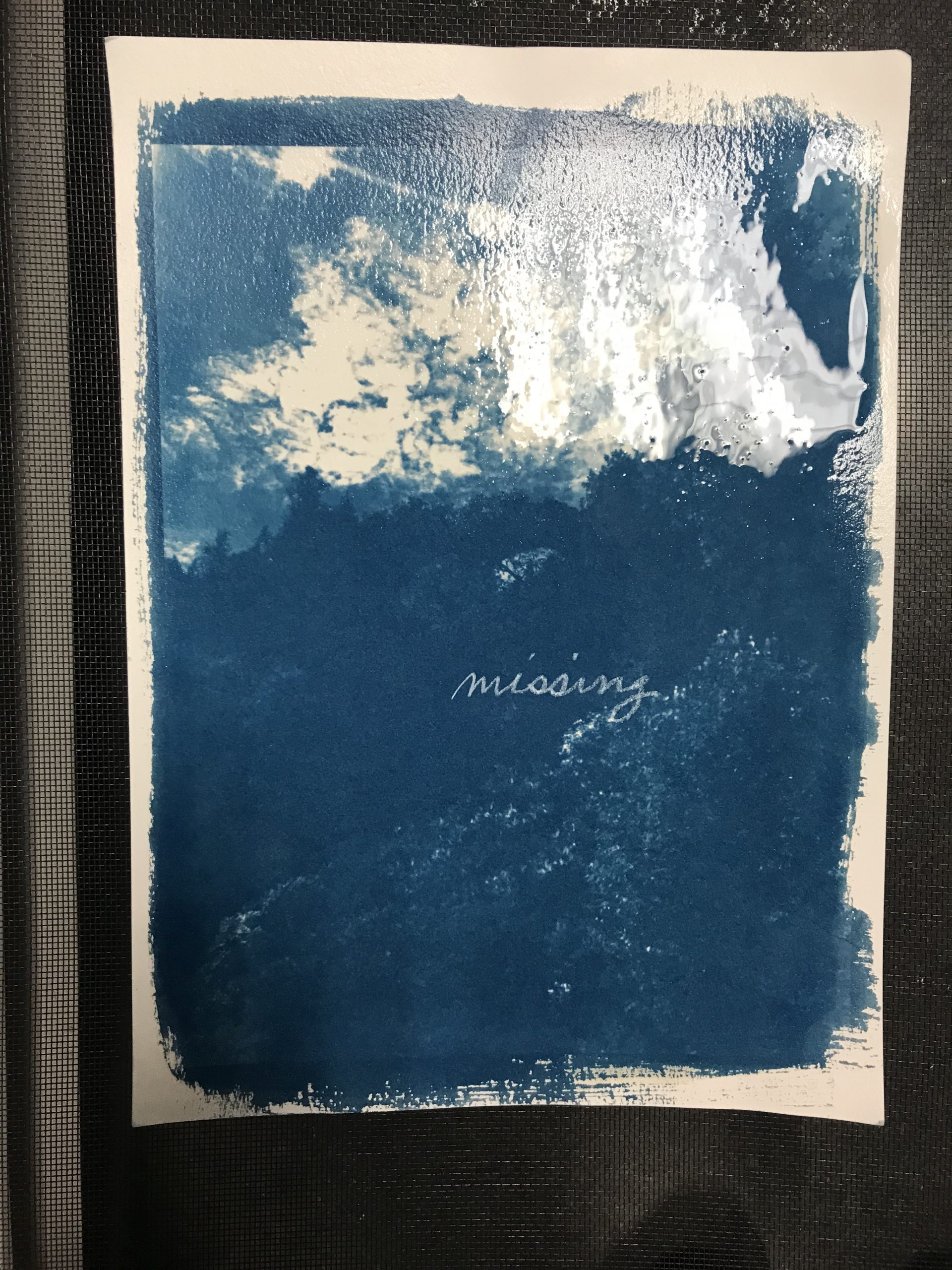 "Image of blue cyanotype image Arch Rock with trees with the word ""missing"" in cursive."