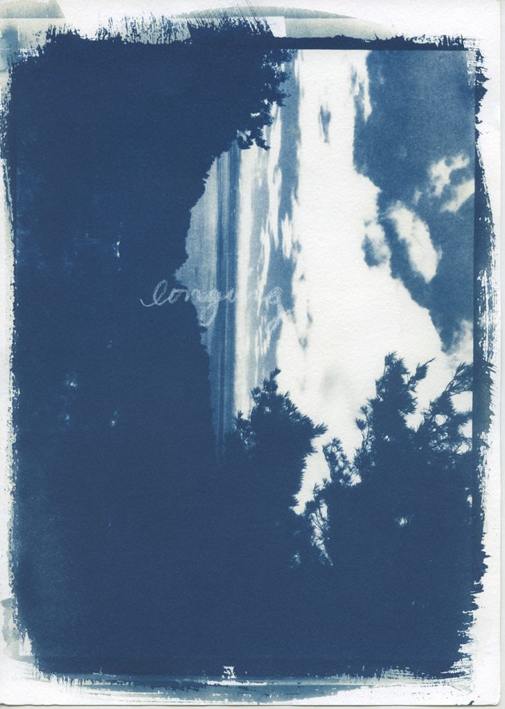 Cyanotype photograph with handwriting.