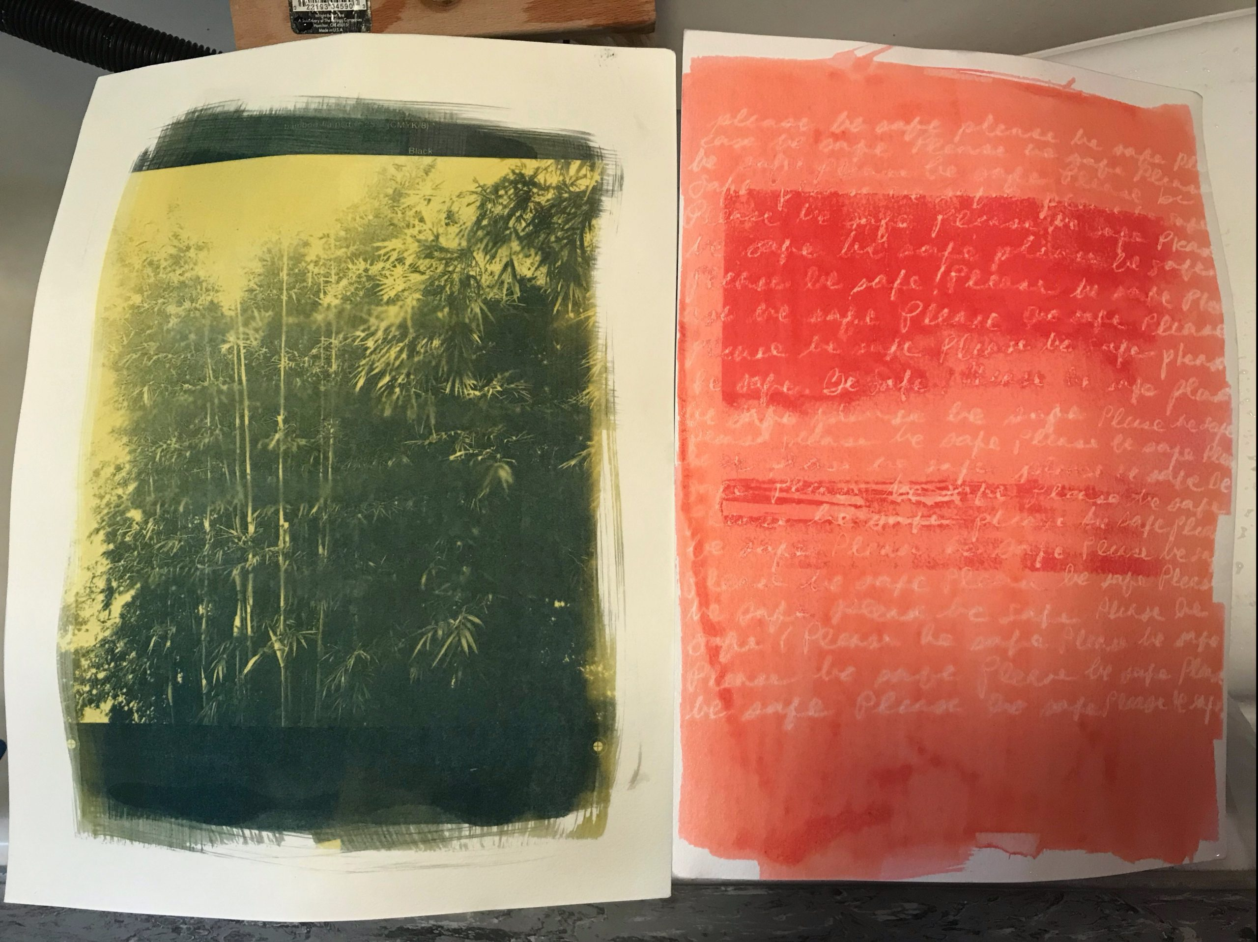 Image of two photographs that use Jacquard Solarfast dyes with handwriting.