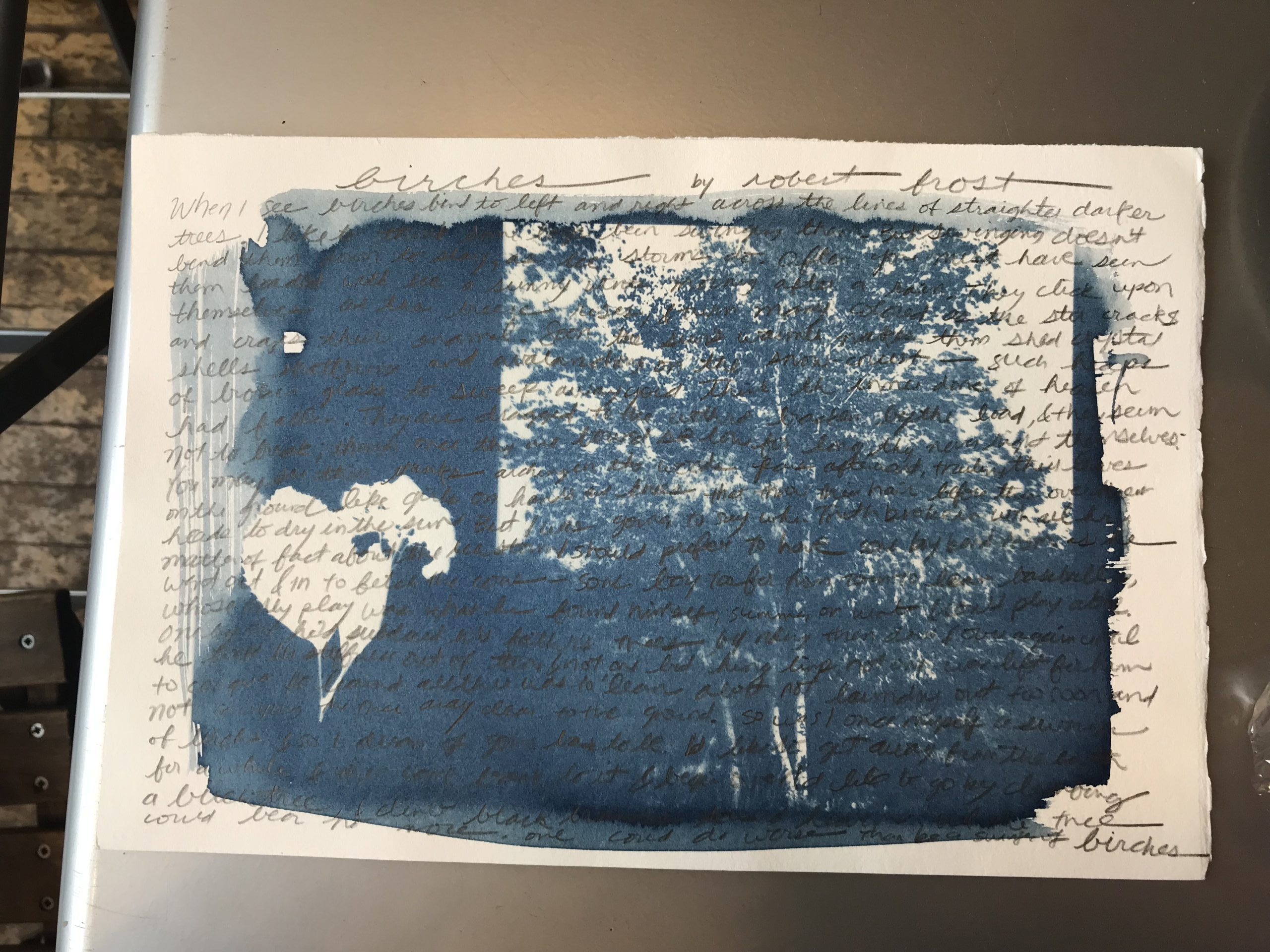 Alternative process photography with handwritten text.
